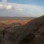Ab in die Gobi-Wueste